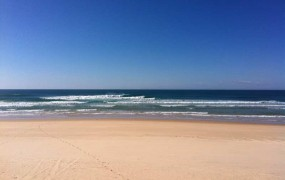 SURF REPORT 1.9.12 – Hopefully picking up for FATHERS DAY!!